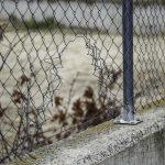 Auckland Lücke in einem Zaun